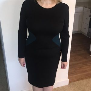 Sophisticated- Ann Taylor Dress